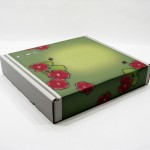 Ladybug Box (Copyright © 2007 Ashley D. Hairston)