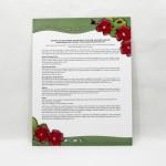 Ladybug Letter (Copyright © 2007 Ashley D. Hairston)