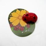 Ladybug Mousepad + Mouse (Copyright © 2007 Ashley D. Hairston)